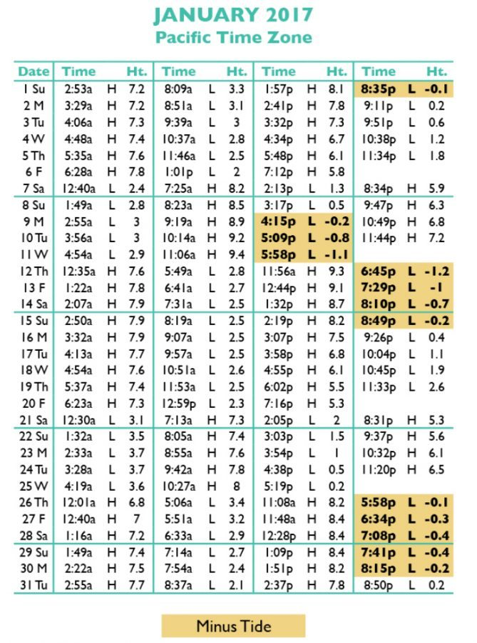 Puget sound tide table table ideas