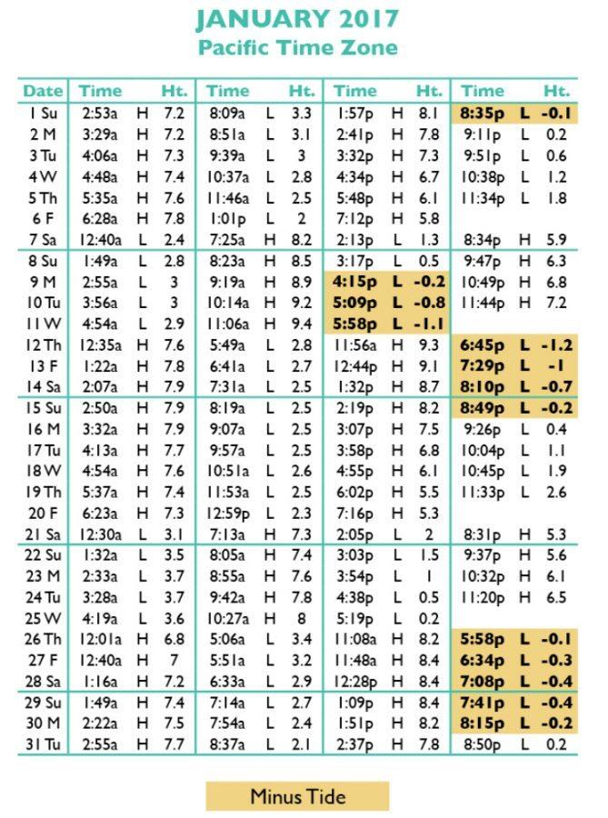 Jacksonville Tide Chart Keninamas