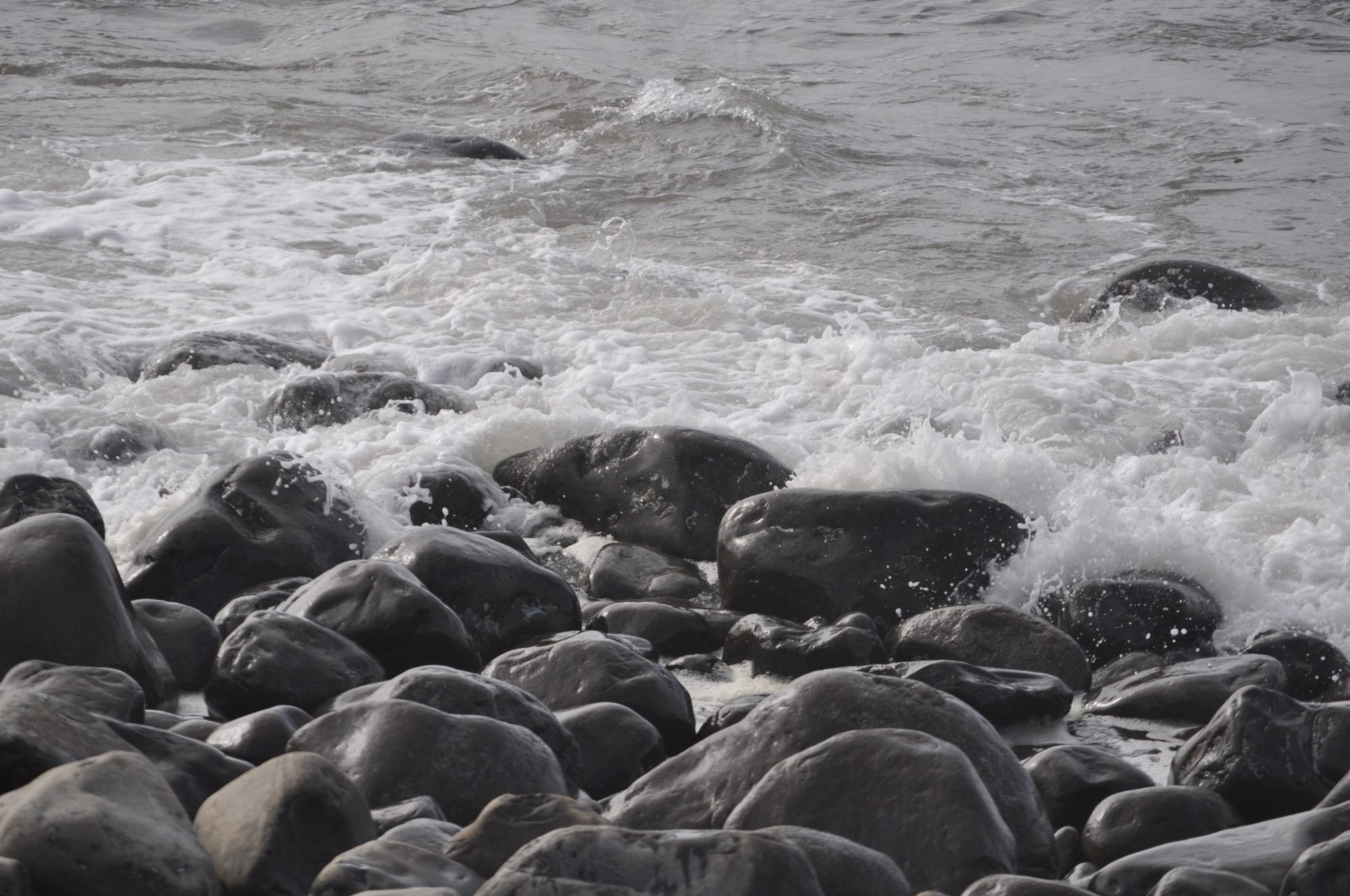 A bed of rocks along the shore of