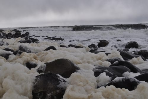 Sea Foam on the shore's of The Cove in Seaside, Oregon