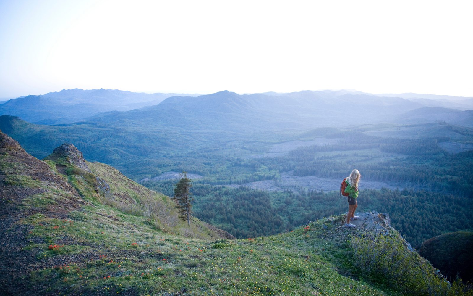 Hiking Saddle Mountain is one of our four favorite hikes around Seaside.