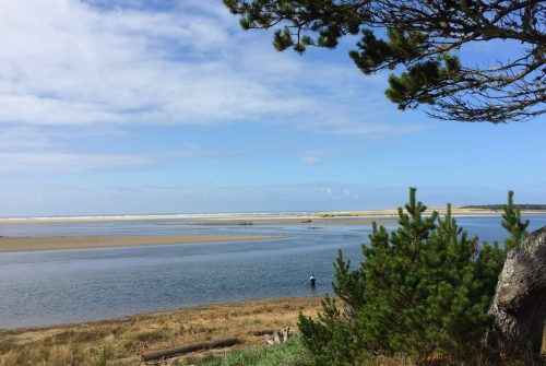 The Seaside Estuary makes an ideal spot to go bird watching along the Oregon Coast.